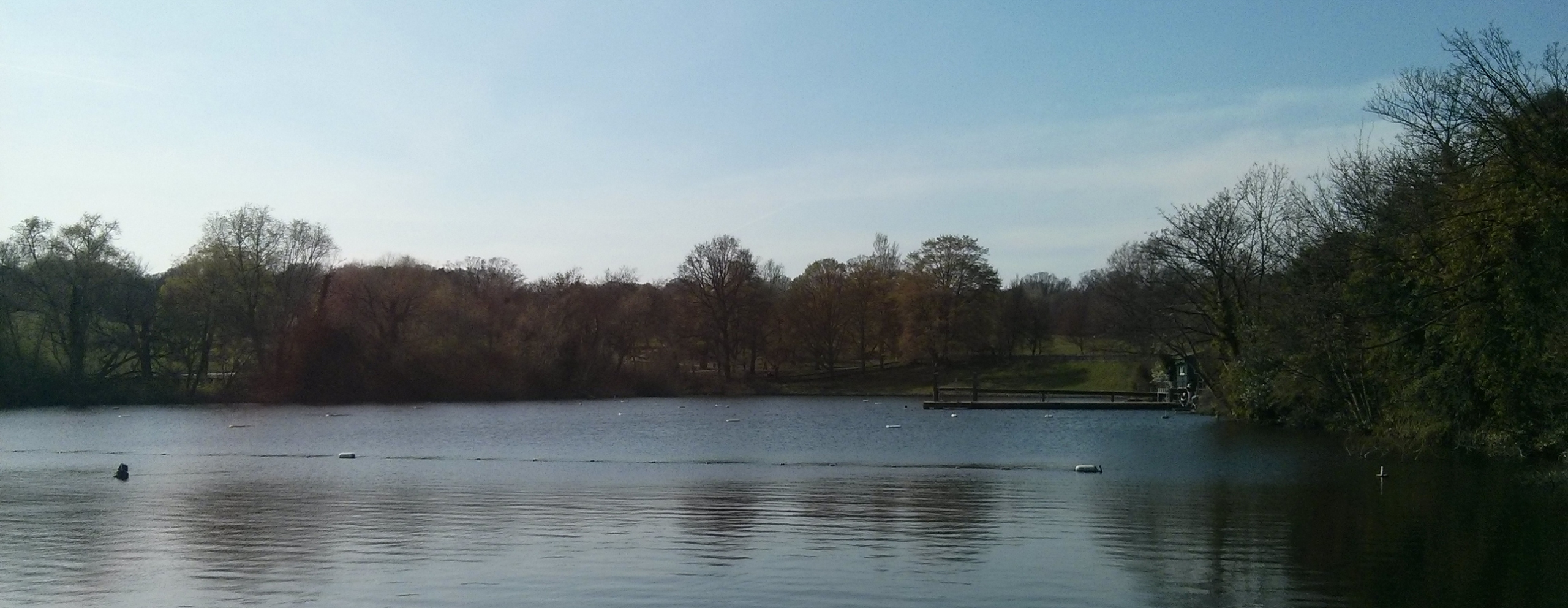 The men's pond at Highgate, March 2014