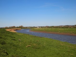 The Great Ouse meanders towards Downham Market