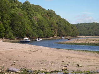 Boats moored on the Erme
