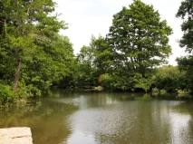 Upstream from the weir