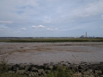 A distant shoreline
