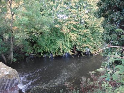 River Dove from the Abbey Bridge
